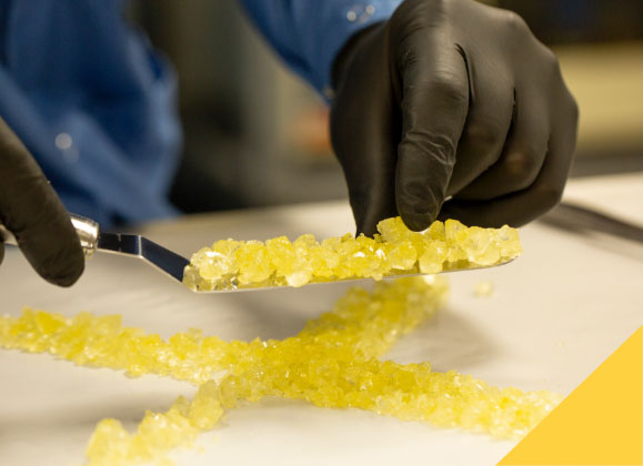 Image result for mpxxx concentrates