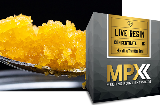 MPX Live Resin Sugar product photo